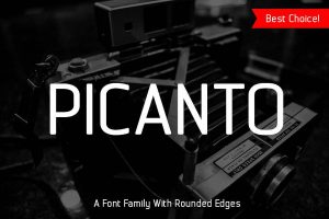PF Bague Round Pro Font Free Download