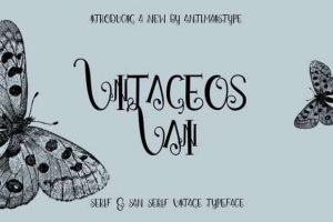 Vintageos Vain Font Free Download