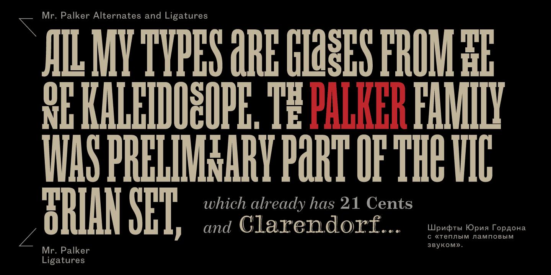 Mr Palker Font Free Download