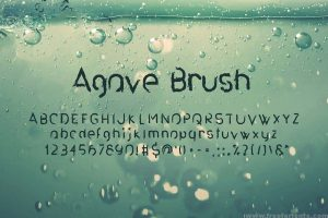 Agave Font Trio Font Free Download