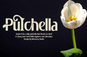 Pulchella Font Free Download