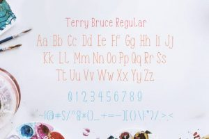 Terry Bruce Font Free Download
