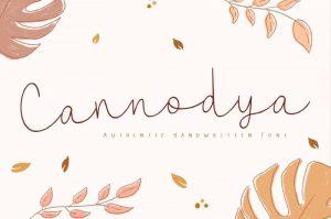 Cannodya Font Free Download